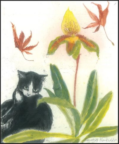 Cat and Orchid Print by Elizabeth Blackadder